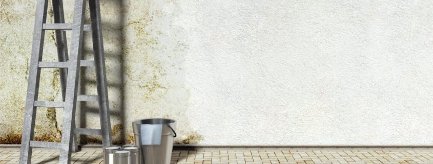 Interior wall coating ireland on a concrete wall