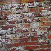Wall coatings like waterproof paint for exterior walls prevent the growth of mould or fungus.