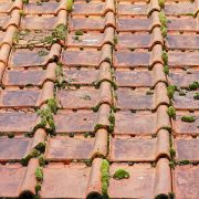 Roof tiles can be protected from moss with roof coating